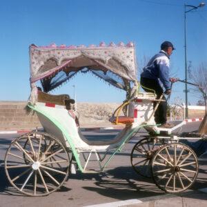 A Man Drives an Empty Coach. Meknes, Morocco.