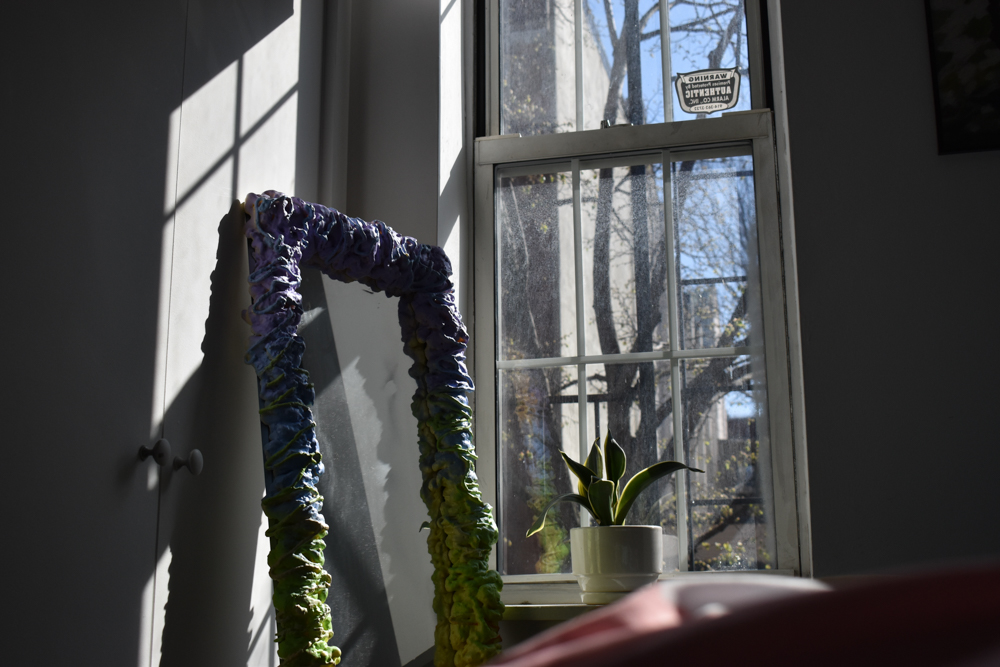 A mirror next to a window, with a snake plant in the sill, in Leah's apartment.